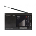 "RADIO SINCRONIZABLE CON RETARDO ""RR-880"" FONESTAR"